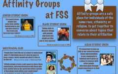 Safe Space: FSS Affinity Groups
