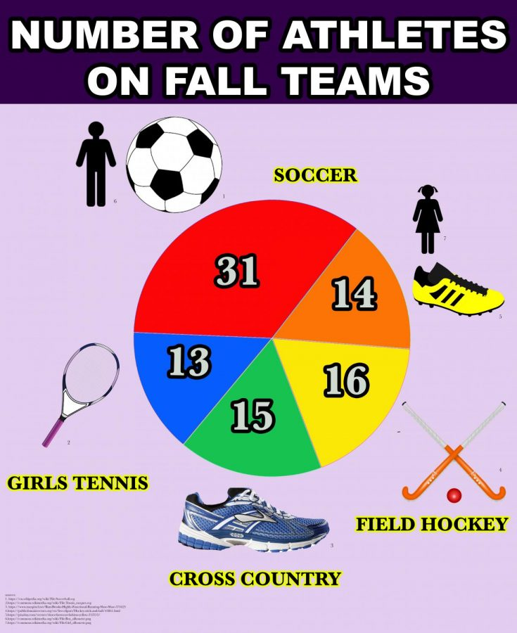 Fall Sports by the Numbers