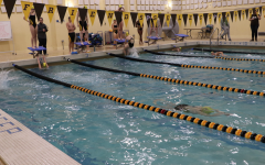 Friends Select Swimming: A Numbers Game