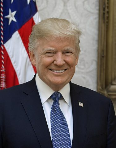 Official portrait of President Donald J. Trump, Friday, October 6, 2017.  (Official White House photo by Shealah Craighead).  Image Courtesy of Wikimedia Commons.